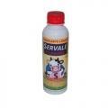 Coalho SERVALE 200 ml