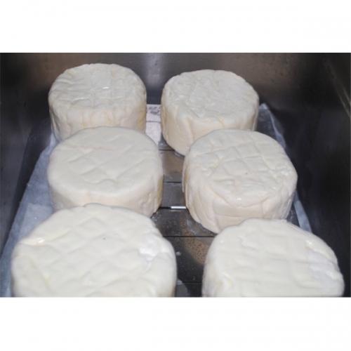 Esporos p/queijo camembert e brie, fr. p/ 20 kg de queijo